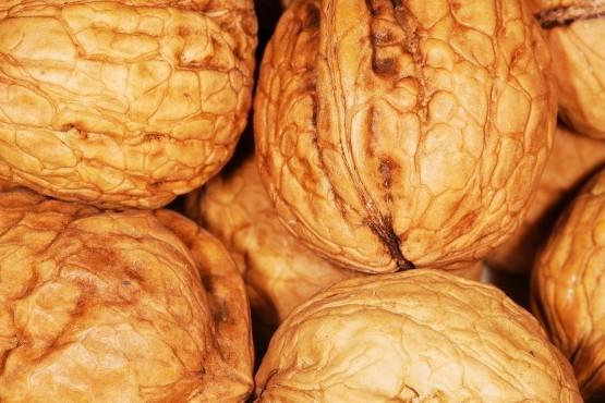 Productores de Mendoza posicionan sus nueces