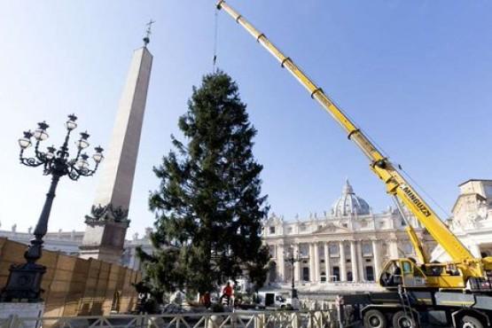 Vaticano enciende las luces del Pesebre y del Árbol de Navidad