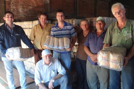 El cultivo de yerba mate, una tradición familiar