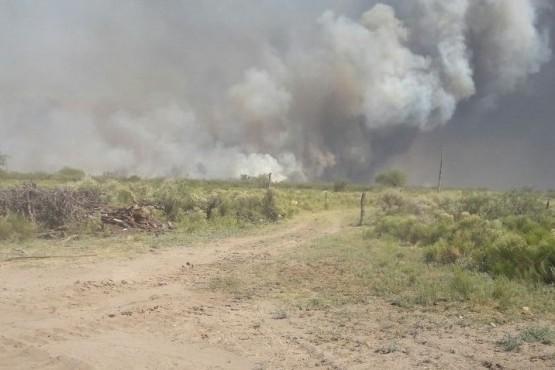 Denuncian falta de prevención en los incendios en el Sur
