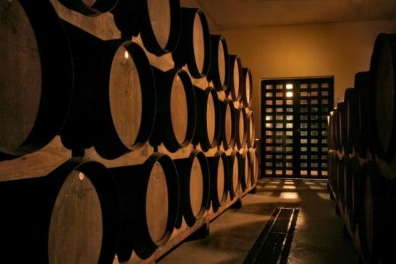 Especialistas del mundo del vino recorrieron Argentina