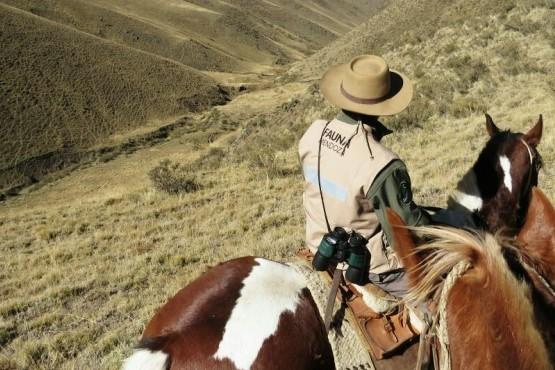 Refuerzan los controles en Alta Montaña contra la caza furtiva