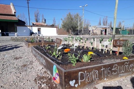 Luján de Cuyo promueve huertas comunitarias