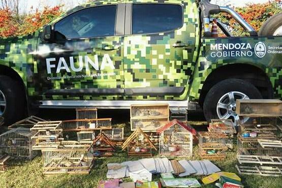 Tres detenidos por vender aves silvestres en el Sur
