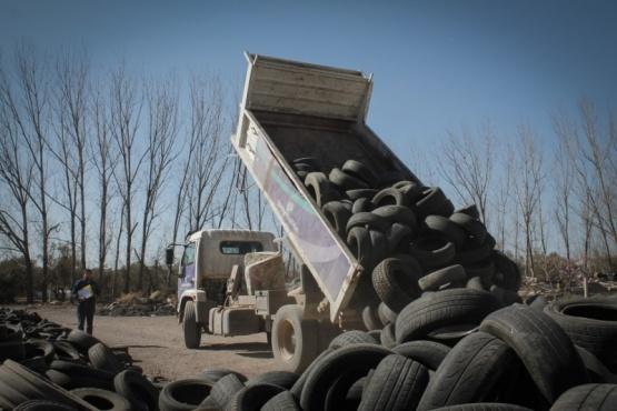 Conciencia ambiental que apuesta al reciclaje