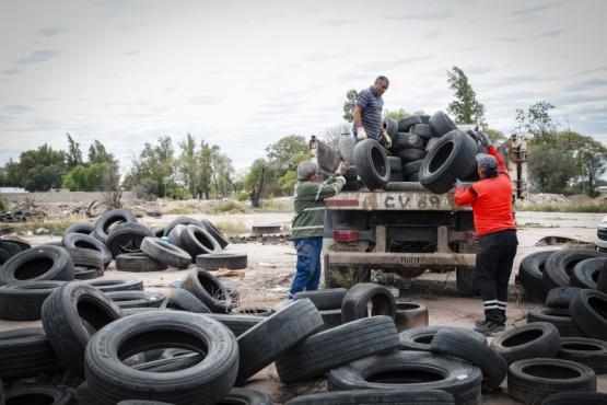 Avanza la gestión de neumáticos fuera de uso