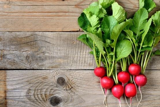 Alimentos de temporada nutritivos