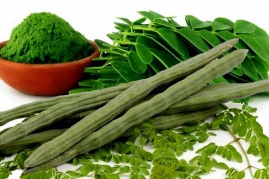 Moringa, un alimento nutritivo