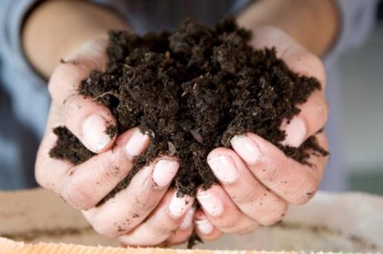 Compost de abono natural