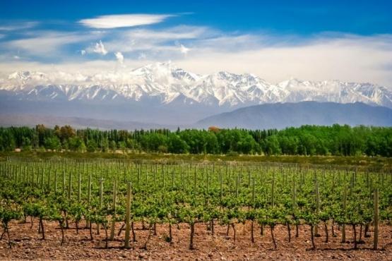 Mendoza, entre los 20 mejores lugares para visitar en 2020