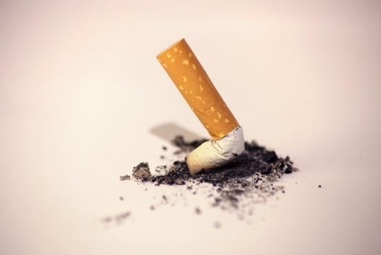 La OMS presenta informe sobre las tendencias mundiales del consumo de tabaco